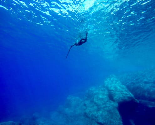 Basic tips for beginners to learn spearfishing