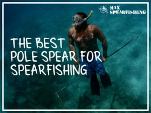 the best pole spears for spearfishing